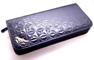 Scissor & Comb Case - Black